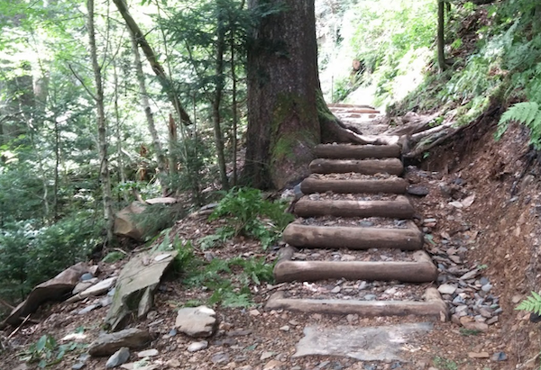 Smokies Box Steps